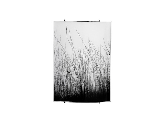 Плафон BLACK GRASS 3 5651