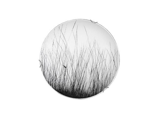 Плафон BLACK GRASS 9 5653